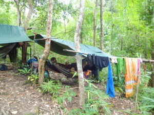 Camp mitten im Dschungel