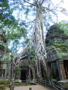 Tempel in Angkor