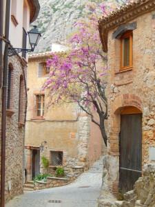 Im schönen Collbató in der Nähe vom Kloster Montserrat